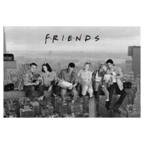 poster_friends_62823009
